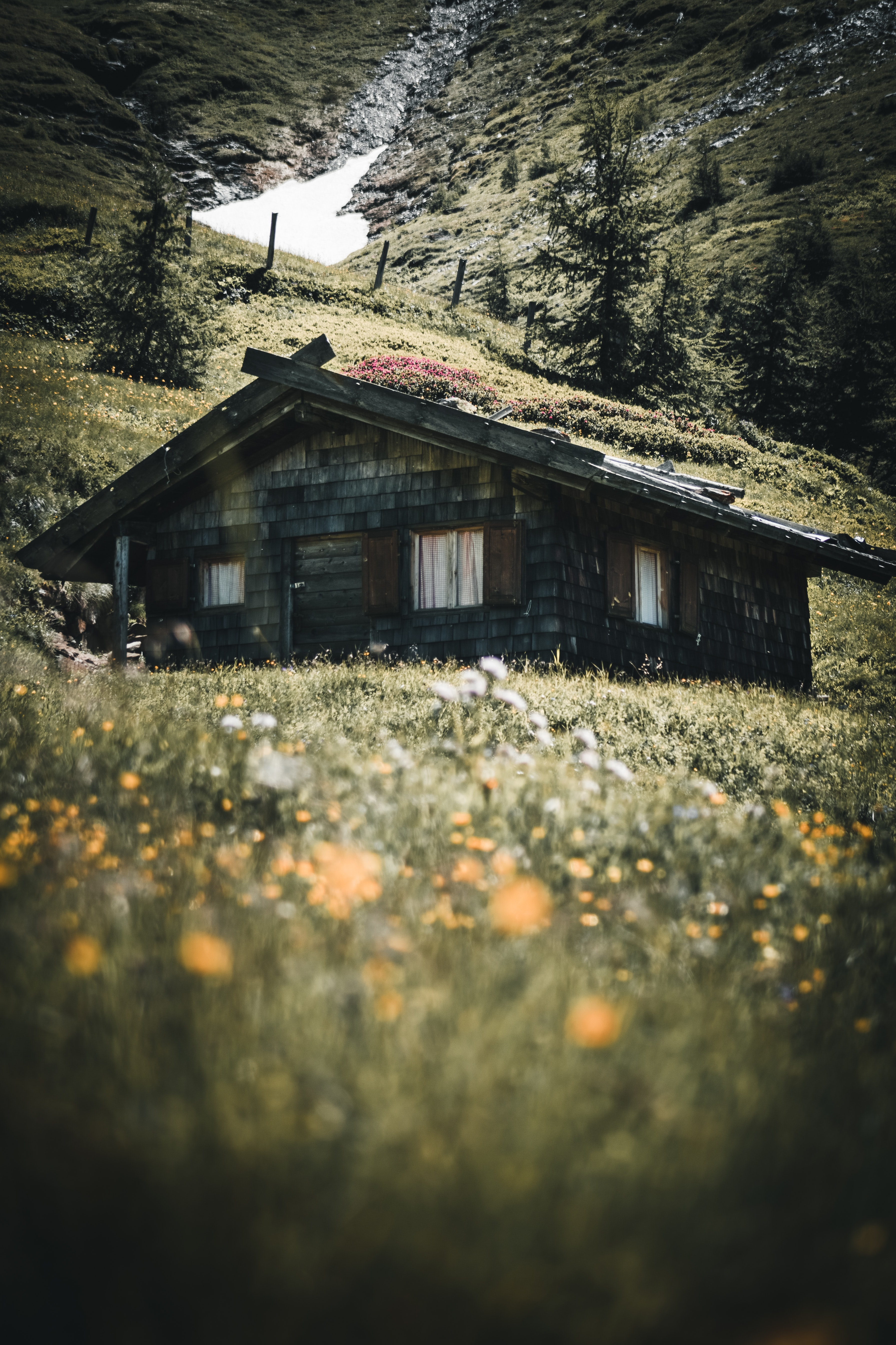architecture-building-cabin-1809647